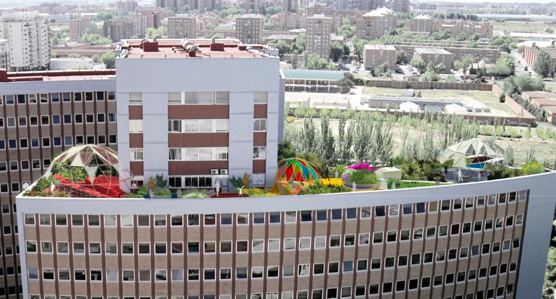 hospital de munecas en madrid: