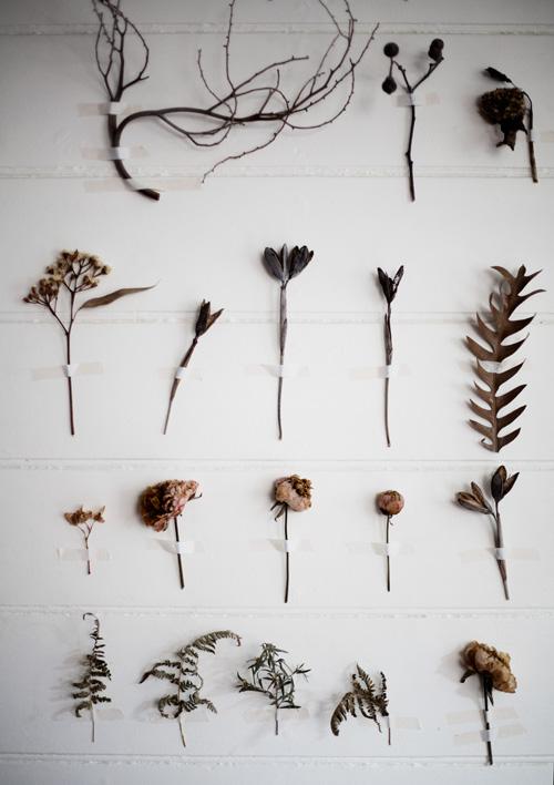 pared con flores 02