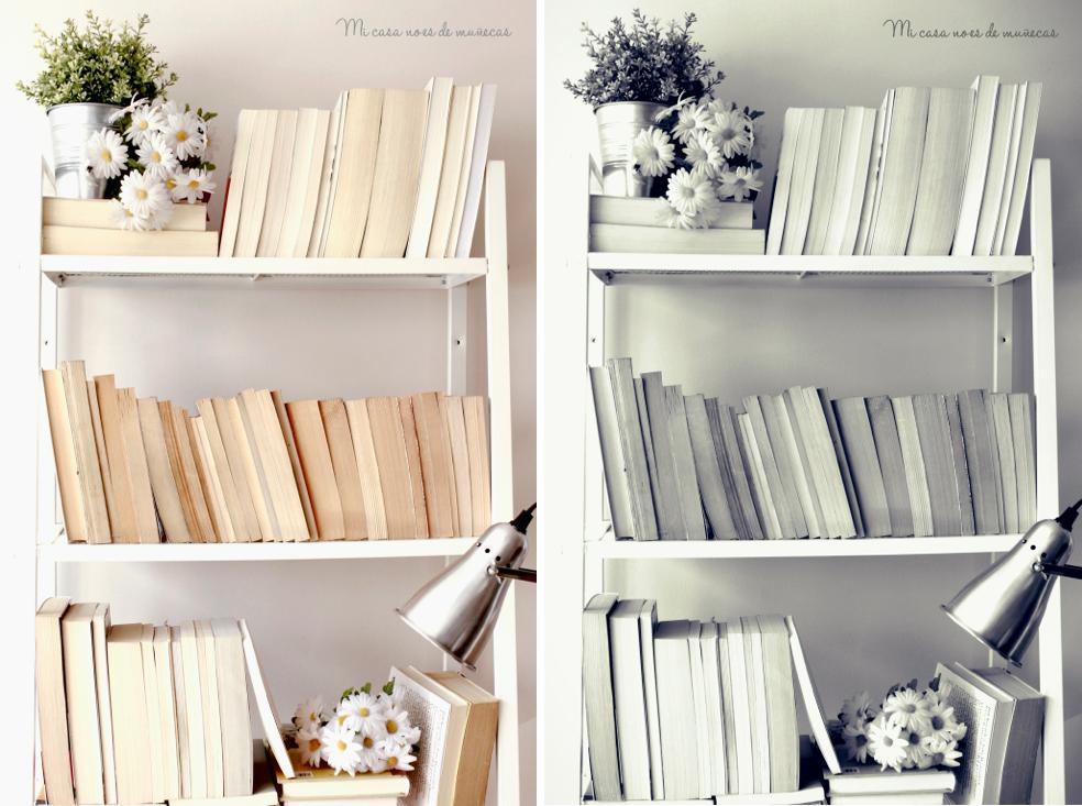 Mi estanteria de libros decorativos 01