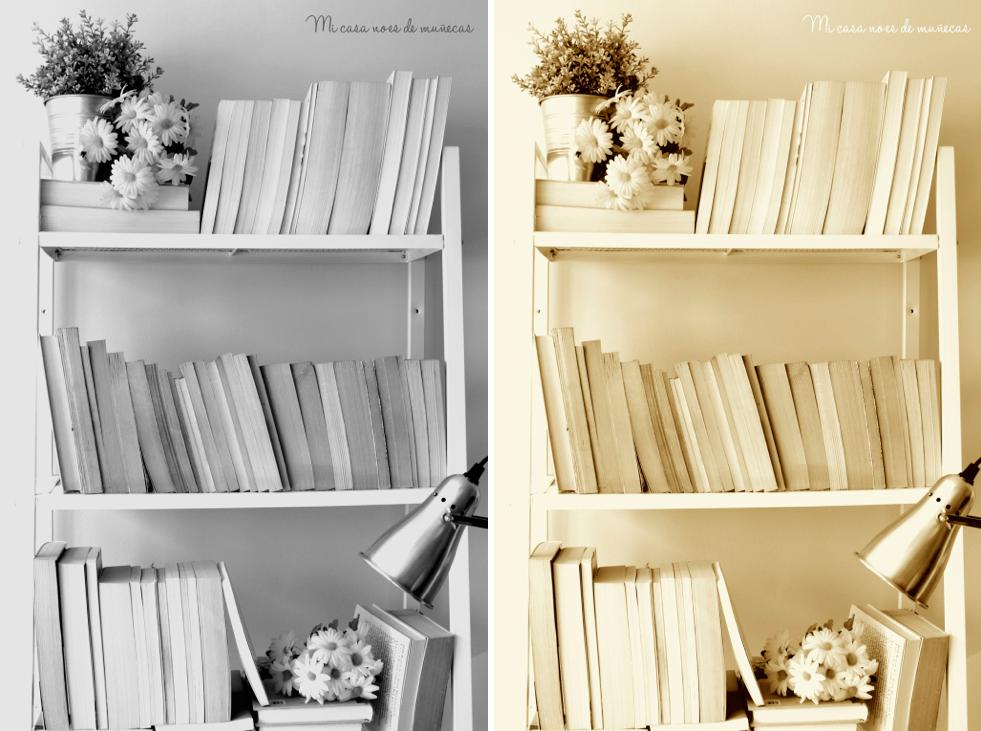 Mi estanteria de libros decorativos 02