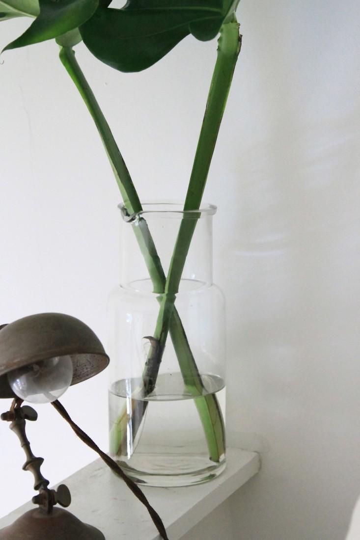 Un rincón verde 01 - decorando con monstera 03