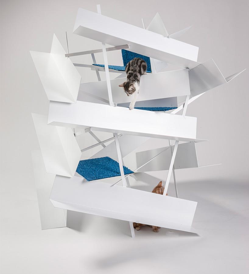 diseño refugio gatos 01
