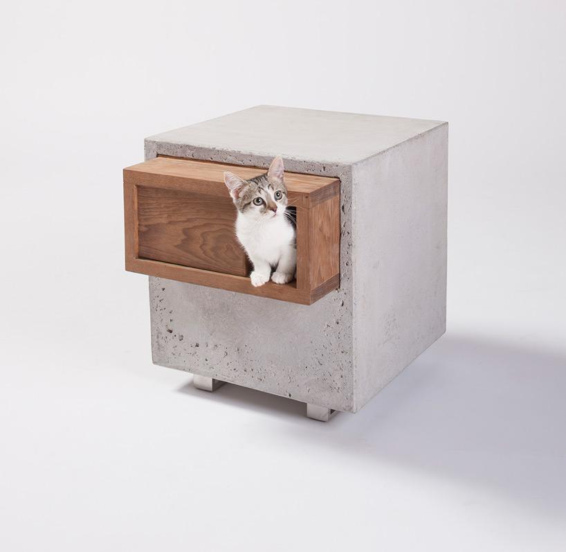 diseño refugio gatos 03
