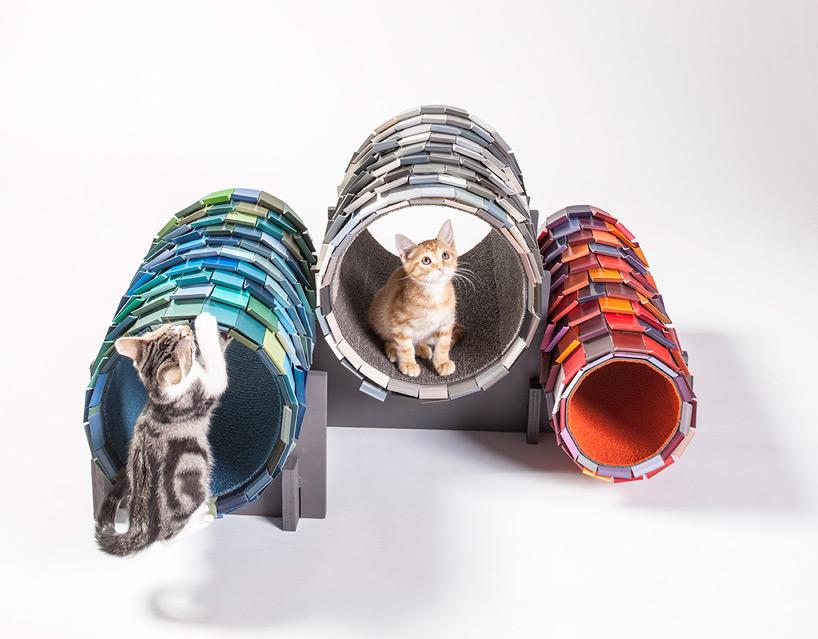 diseño refugio gatos 05