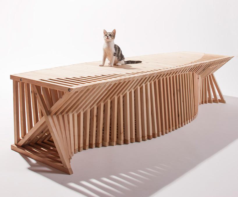 diseño refugio gatos 06