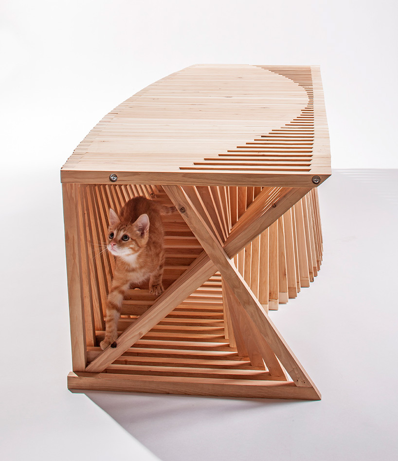 diseño refugio gatos 07