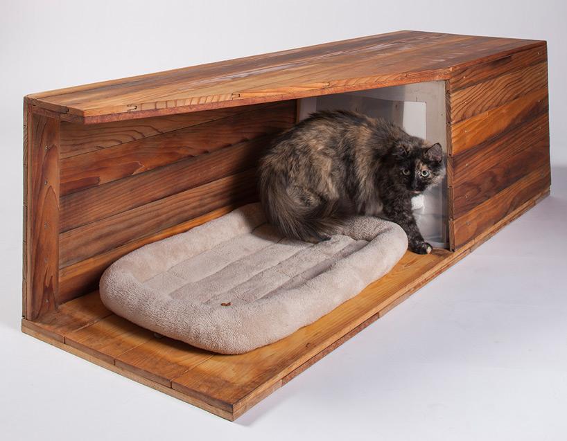 diseño refugio gatos 10