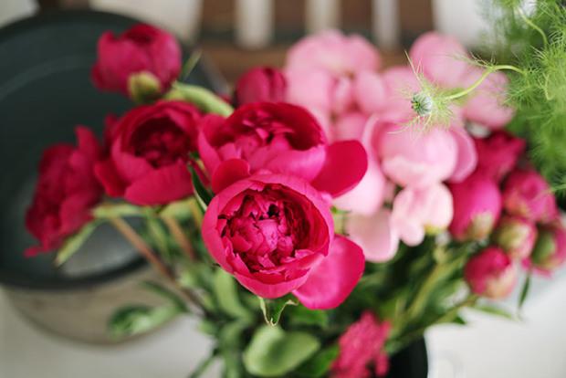floracultural-society-8