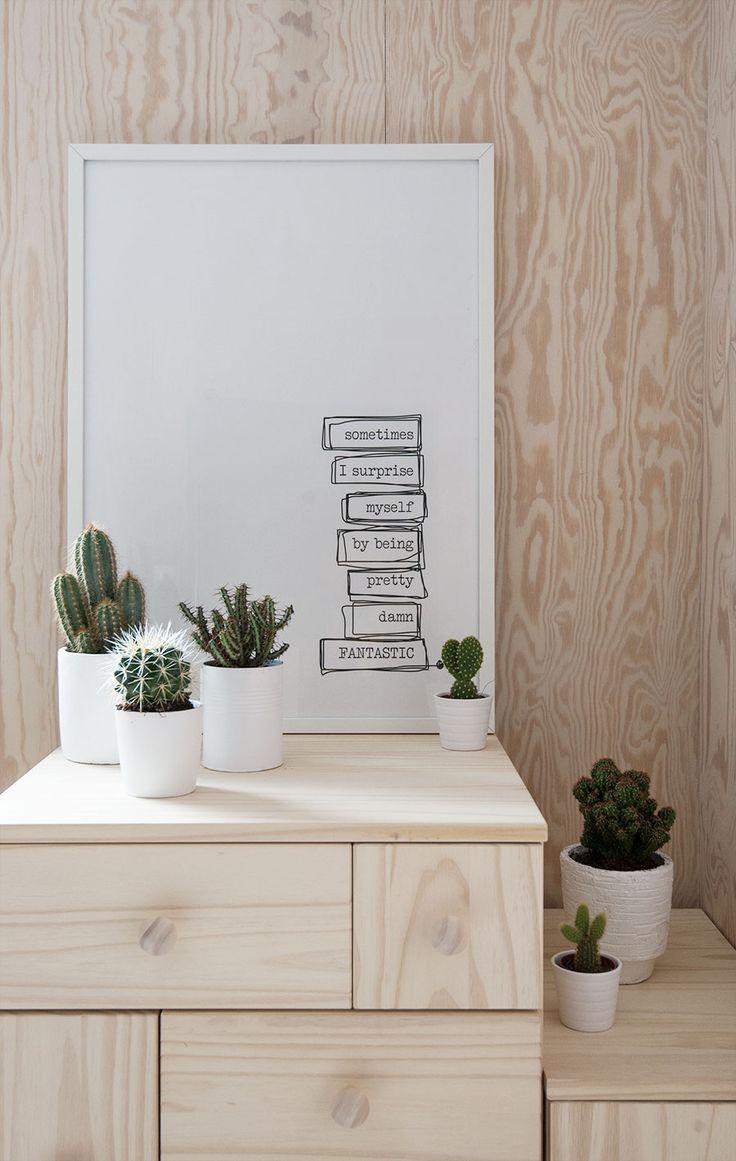 Deco con cactus 05