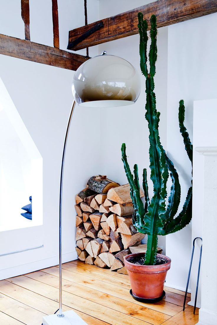 Deco con cactus 12