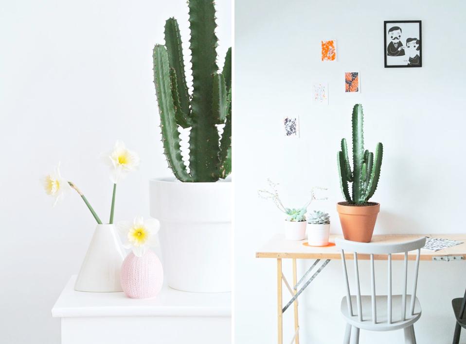Deco con cactus 21
