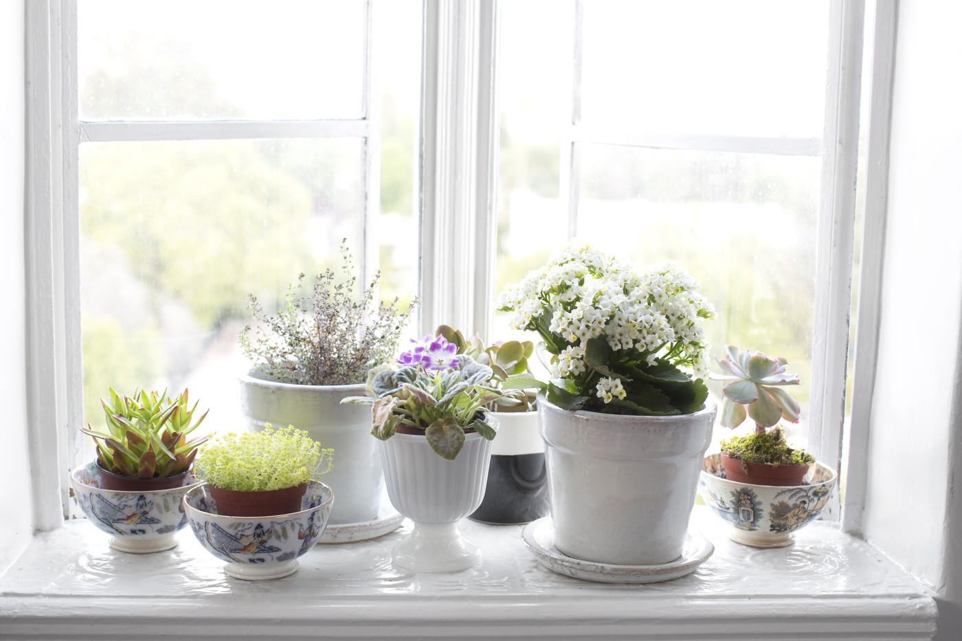 decorar-el-alfeizar-de-la-ventana-04