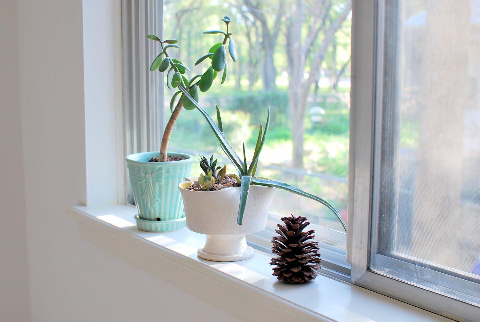 decorar-el-alfeizar-de-la-ventana-06