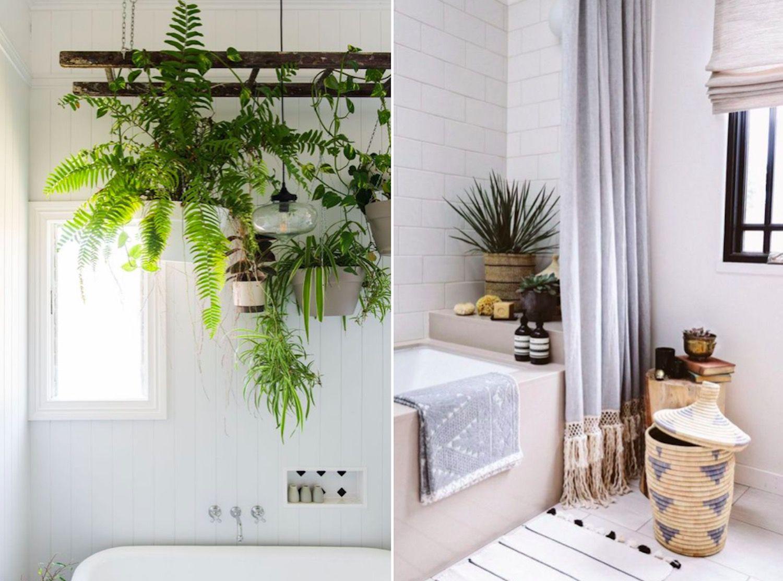 Plantas en el ba o mi casa no es de mu ecas blog y asesor a online en decoraci n e interiorismo - Plantas en el bano ...